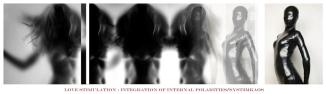 LOVE STIMULATION INTEGRATION OF INTERNAL POLARITIES SYST3MKAOS BERT JANSSENS WB